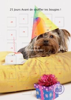 anniversaire_vertical2