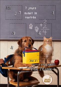 7Javant-VRT-chien-chat-ecole-decoupe