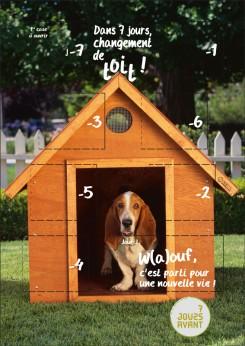 7Javant VRT chien niche.indd