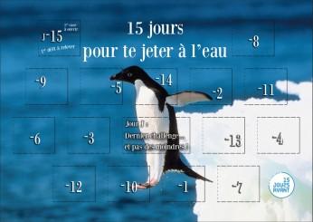 15JAvant-HRZ-pingouin
